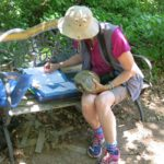 Kathy recording turtle 25 Jun 16